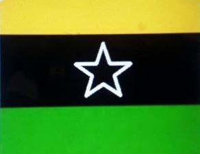 [Republic of Logone flag