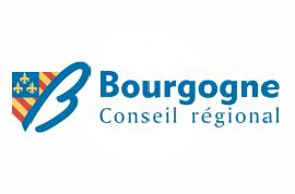 [Bourgogne Regional Council flag