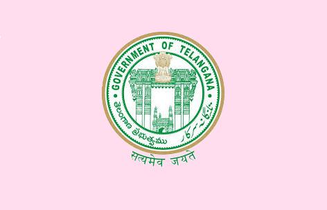 [Telangana government flag